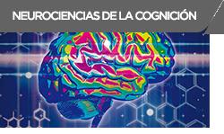 neurociencais