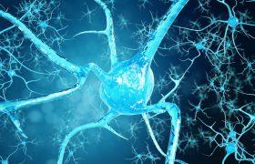 ¿Cuál es la causa de la esclerosis múltiple? | Grupo Gamma
