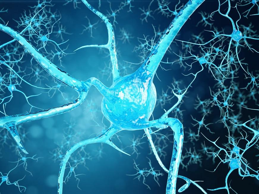 ¿Cuál es la causa de la esclerosis múltiple?