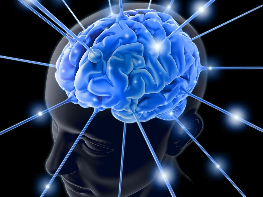 Neurociencia, una mirada integral al individuo