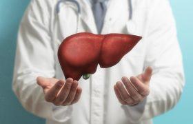 Factores de riesgo en la tendencia creciente de casos de cáncer de hígado | Grupo Gamma