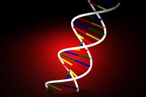 ¿Qué es un estudio de ADN?