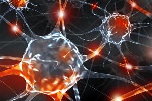 Investigación Neurociencias Grupo Gamma