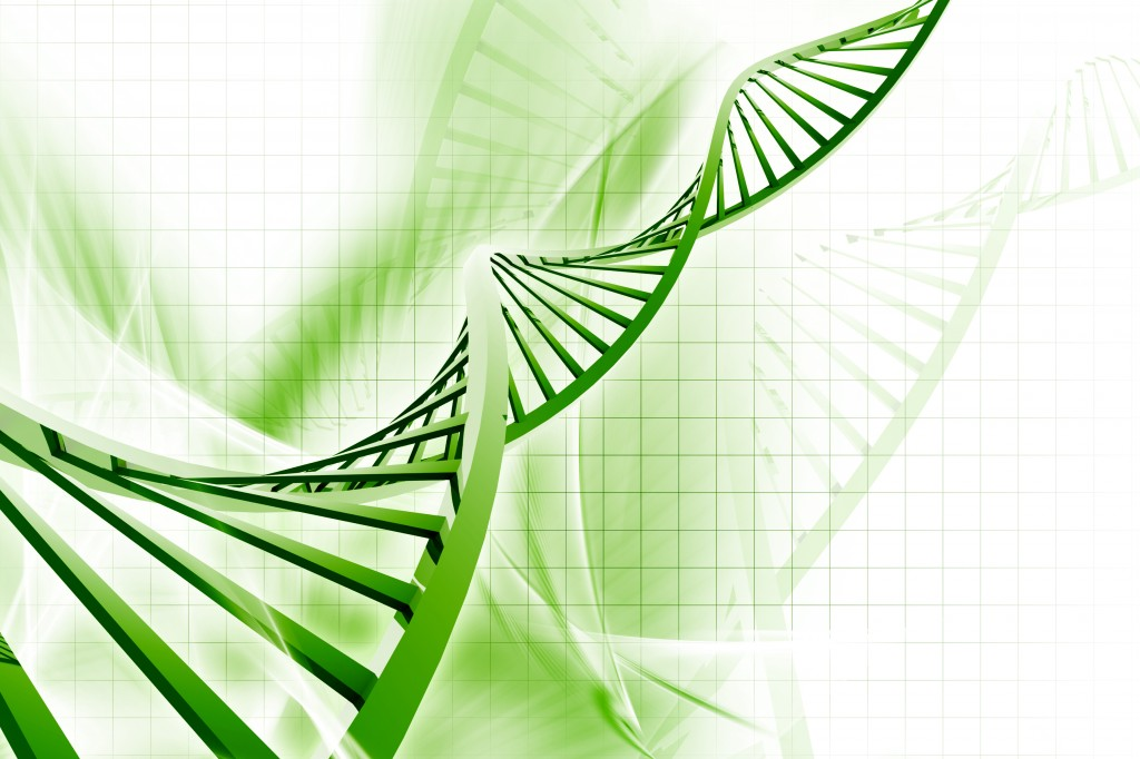 ¿Cómo se realiza un estudio de ADN?