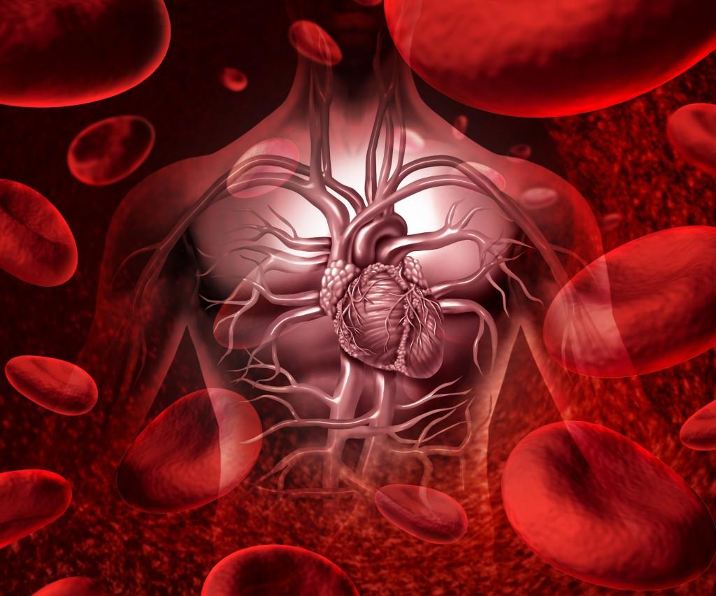 13 de Octubre –  Día mundial de la trombosis
