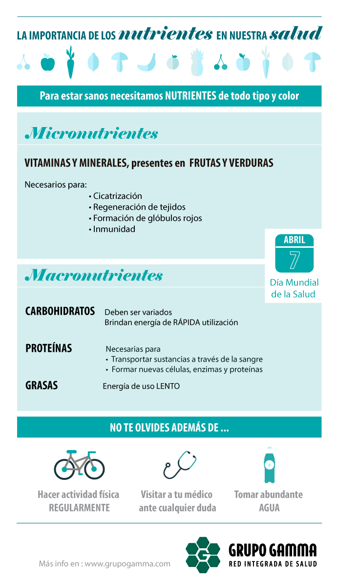 Infografía Nutrientes