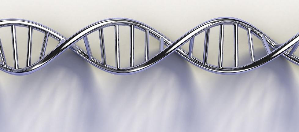 Asesoramiento Genético en Oncología