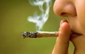 Marihuana: Adicción y Nocividad para el cerebro