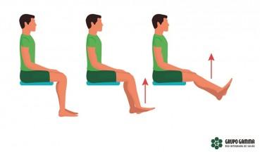 Flexo-extensión sentado