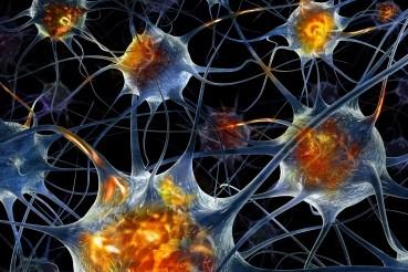 Esclerosis Lateral Amiotrófica: un enfoque multidisciplinario