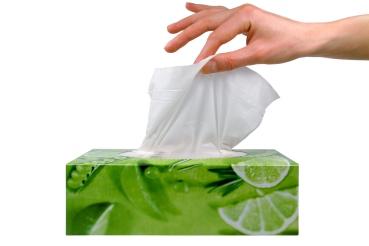 Resultado de imagen para pañuelos de papel o pañuelos de tela