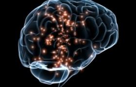 Neurociencia, Neurotecnología y adicciones: un simposio que mira hacia el futuro