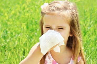 Sinusitis: Causas inflamatorias, estructurales, inmunológicas e infecciosas