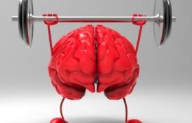 Desafío Cognitivo: Ejercicios para el cerebro