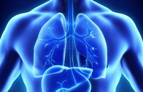 Hepatocarcinoma: Tratamiento en estadío intermedio y avanzado. | Grupo Gamma