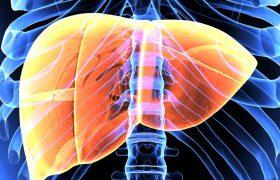 Hipertensión porta - Evento médico- Grupo Gamma