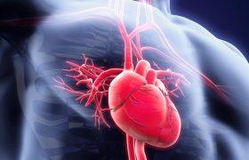 CardioGamma I - Evento Médico - Grupo Gamma