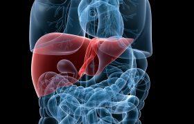 Cirugía Hepatobiliar y Pancreática