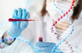 Estudios genéticos - Gammalab - Grupo Gamma
