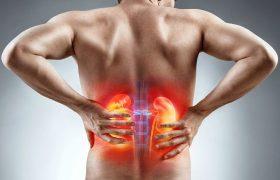 Disfunción renal en las enfermedades hepáticas - Grupo Gamma