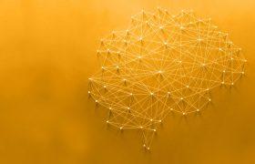MENN - Mastría en Neurociencias acreditada por la CONEAU - Grupo Gamma