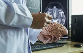 Señales de tumores cerebrales - Grupo Gamma