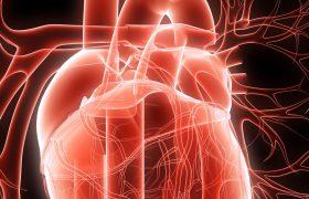 Ateneo Cardiología | Conducta ante el hallazgo de Fístulas Coronarias | HPR | Grupo Gamma