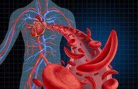 Ateneo Cardiología | Actualización en Antiagregación Plaquetaria | Grupo Gamma