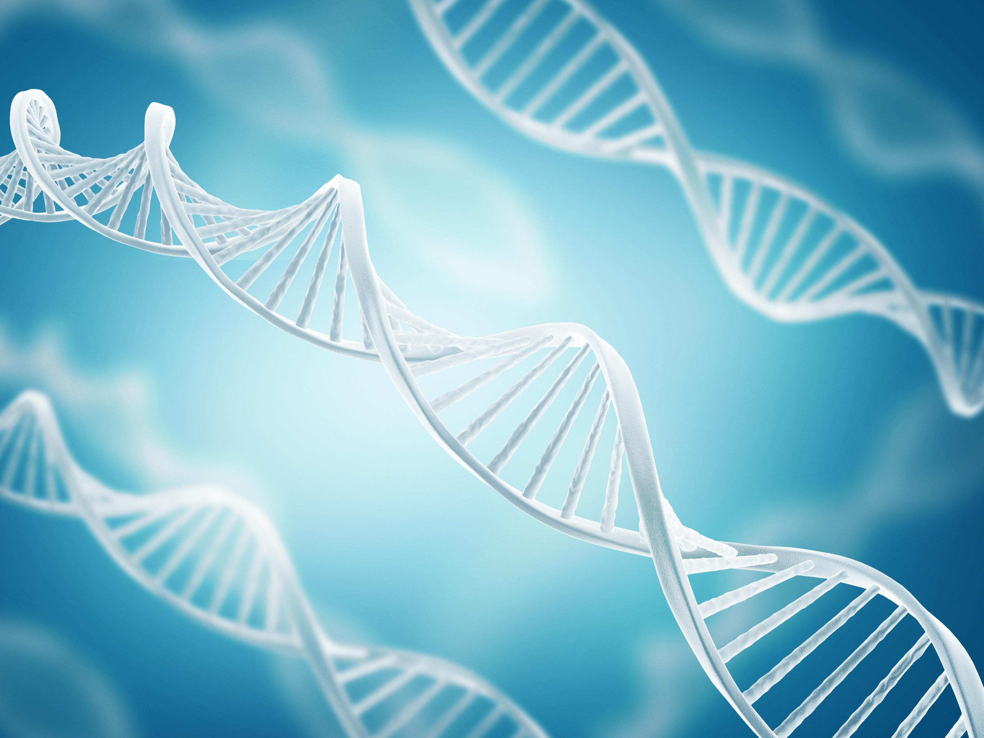 Análisis comparativo de ADN
