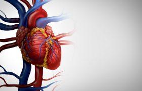 Ateneo Cardiología | Grupo Gamma