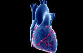 Ateneo Cardiología | Tratamientos Percutáneos en Valvuloplastia Mitral