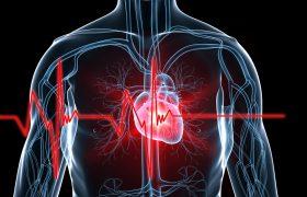 Ateneo Cardiología | Amiloidosis Cardíaca | Grupo Gamma