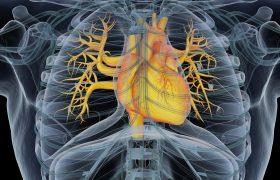 Ateneo Cardiología | Aterosclerosis Coronaria en paciente joven | Grupo Gamma