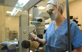 ASSISTED HATCHING: Eclosión asistida mediante láser en tratamientos de reproducción | Grupo Gamma
