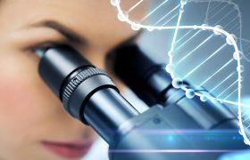 Fragmentación de ADN, Columnas de Anexinas | Grupo Gamma