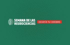Semana de las Neurociencias | Grupo Gamma
